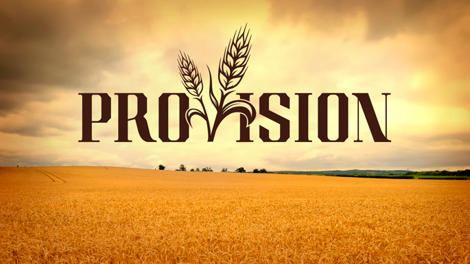 Provision for your vision life palette